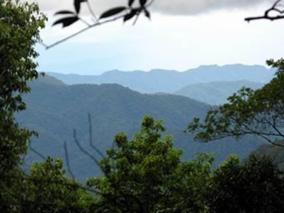 Vườn Quốc gia Pù Mát – Ảnh: nguồn pumat.vn