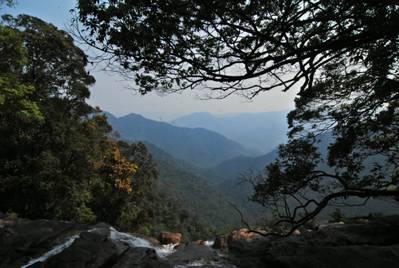 Vườn Quốc gia Bạch Mã - Ảnh: nguồn bachma.vnn.vn