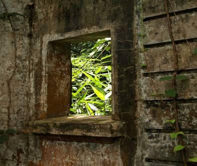 Biệt thự cổ bị hoang phế - Ảnh: nguồn bachma.vnn.vn
