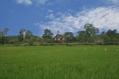 Xương Lăng giữa cảnh yên bình của đồng quê… – Ảnh: nguồn huexuavanay.com