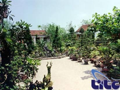 Mỗi nhà là một vườn cây – Ảnh: nguồn vnppa.org.vn
