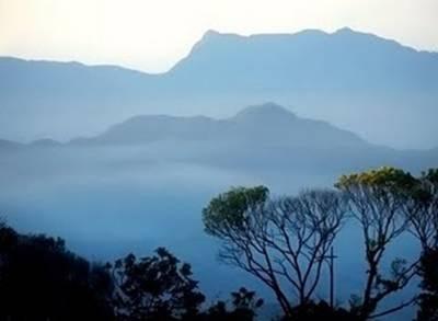 Thiên nhiên Mộc Châu kỳ ảo – Ảnh: nguồn mytour.vn