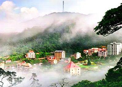 Tam Đảo giữa biển mây – Ảnh: nguồn traitimviet.com