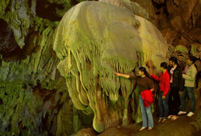 Surprised by stalactites like ... flowers
