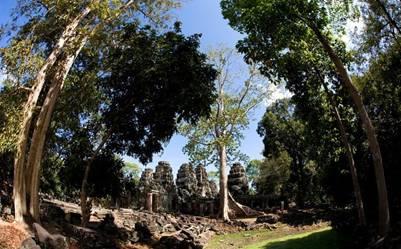 Quần thể Angkor được rừng che chở bảo vệ