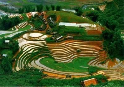 Ruộng bậc thang Lai Châu