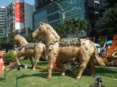 Ngựa giữa đồng hoa…