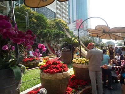 Khách du Xuân bên những công trình hoa