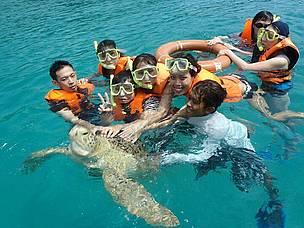 Bơi lặn tại Perhentian