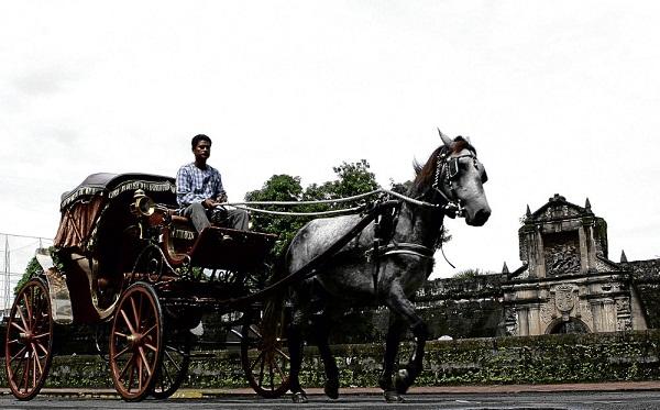 Lối xưa xe ngựa…