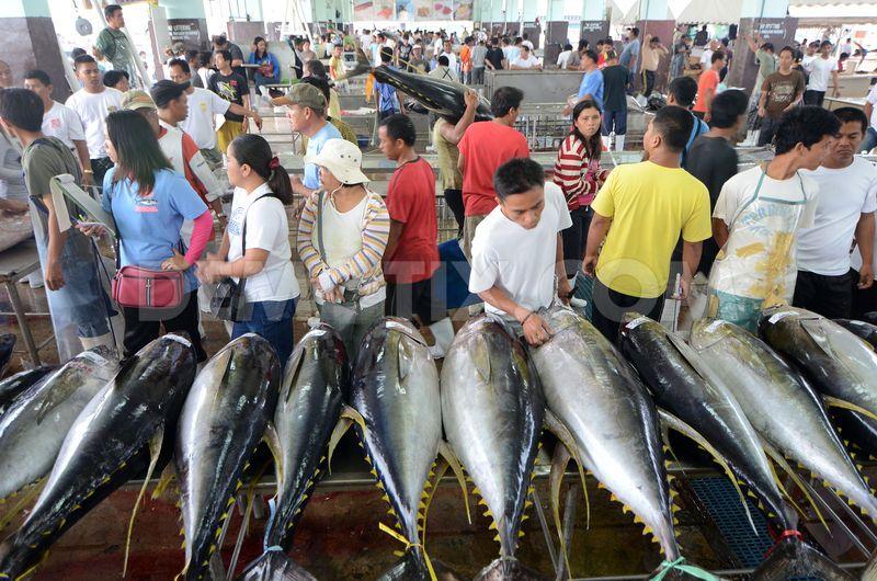 một trong các nhà sản xuất cá ngừ