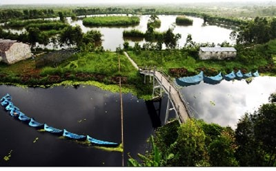 Hồ Hoa Mai